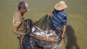Pescadores Copeyito