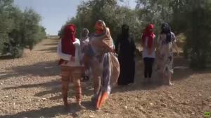 Mujeres marroquíes denuncian acoso