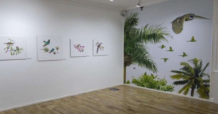 Aves endémicas isla la Hispaniola